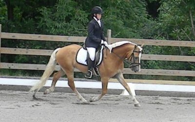 A Black Tie Affair NW_HRZN Makes Dressage Debut